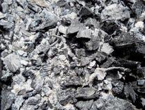 I carboni scuri royalty illustrazione gratis