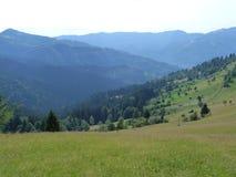 I Carpathians ucraini Fotografie Stock