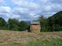 I Carpathians ucraini Immagine Stock Libera da Diritti