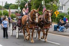 I cavalli di Brown Clydesdale tirano il vagone alla parata in U.S.A. fotografia stock