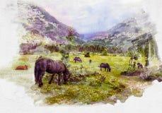 I cavalli pascono nella valle fra le montagne royalty illustrazione gratis