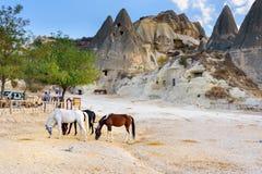 I cavalli sulla caverna alloggia il fondo Goreme Cappadocia La Turchia Immagini Stock Libere da Diritti