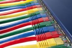 I cavi della rete di Ethernet hanno connesso ad un router Fotografia Stock