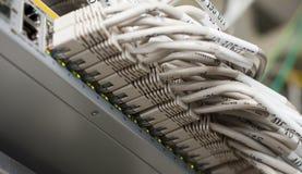 I cavi di Ethernet hanno connesso ad un interruttore Fotografia Stock