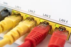 I cavi di Ethernet rossi sono connessi all'interruttore blu del Internet E Immagine Stock Libera da Diritti