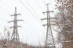 I cavi elettrici ad alta tensione della colonna nell'inverno della foresta atterra Immagini Stock