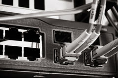 I cavi ottici della fibra hanno connesso ad un interruttore Fotografia Stock