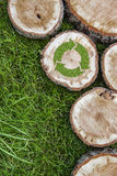 I ceppi di albero sull'erba con riciclano il simbolo Fotografie Stock Libere da Diritti