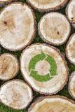 I ceppi di albero sull'erba con riciclano il simbolo Fotografia Stock Libera da Diritti