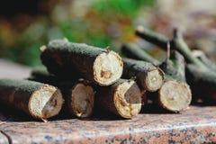 I ceppi rotondi dei ceppi sono granito messo su Fotografia Stock