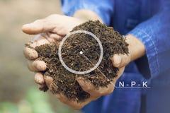 I cerchi di Infographics e la N - P - K, agricoltori maschii stanno utilizzando entrambe le mani clayed con la buccia del riso Pu Immagine Stock