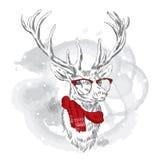 I cervi sono disegnati a mano Cervi di vettore annata Cervi in sciarpa ed occhiali da sole Immagine Stock