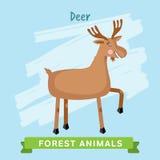 I cervi Vector, animali della foresta Fotografia Stock
