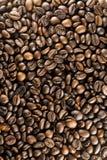 I chicchi di caffè fotografie stock