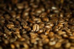 i chicchi di caffè deliziosi si chiudono su come fondo fotografia stock libera da diritti