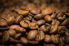 I chicchi di caffè di Brown si chiudono su fotografia stock libera da diritti