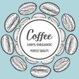 I chicchi di caffè passano l'illustrazione disegnata a mano dell'insegna di vettore della botanica Fotografia Stock