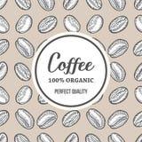 I chicchi di caffè passano l'illustrazione disegnata a mano dell'insegna di vettore della botanica Immagini Stock