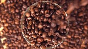 I chicchi di caffè sono versati in una fine di vetro del becher su I grani sono versati sopra il bordo stock footage