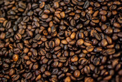 I chicchi di caffè textued l'estratto del fondo Immagini Stock