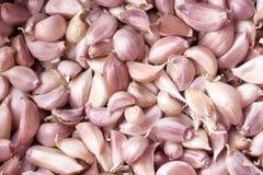 I chiodi di garofano di aglio si chiudono su Immagine Stock Libera da Diritti