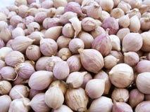 I chiodi di garofano di aglio si chiudono su Immagini Stock
