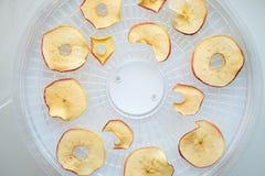 I chip tinti freschi della mela hanno preparato in un essiccatore domestico della verdura e della frutta Concetto vegetariano san fotografie stock libere da diritti