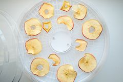 I chip tinti freschi della mela hanno preparato in un essiccatore domestico della verdura e della frutta Concetto vegetariano san immagini stock libere da diritti