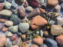 I ciottoli Oscean colora naturale Fotografia Stock Libera da Diritti