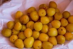 I ciruelitas gialli delle prugne della mirabella chiamati nel Perù hanno allineato nel cerchio su un mercato a Arequipa, Perù Immagine Stock