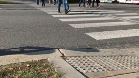 I cittadini attraversano la strada dal passaggio pedonale vicino a trasporto pubblico archivi video