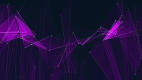 I collegamenti PORPORA astratti della rete del poligon si appannano il video variopinto di nuovo di qualità del fondo di animazio video d archivio