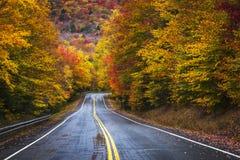 I colori dell'autunno Immagine Stock Libera da Diritti
