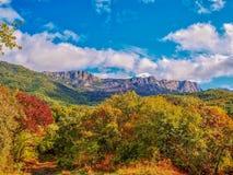 I colori dell'autunno in anticipo Fotografie Stock