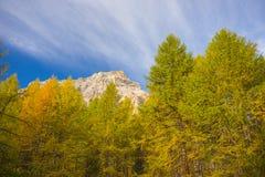 I colori dell'autunno nelle alpi Fotografia Stock Libera da Diritti