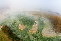 I colori della fonte vulcanica nel Rupite, Bulgaria Fotografia Stock