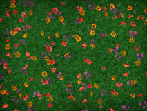 I colori della sorgente Fotografie Stock