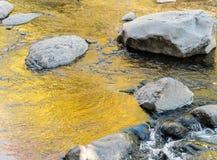 I colori di autunno riflettono a Oak Creek vicino a Sedona fotografia stock libera da diritti