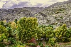 I colori luminosi dell'autunno fa il giardinaggio nel villaggio alpino Fotografia Stock
