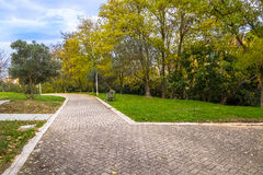 I colori variopinti gialli e verdi di autunno delle foglie nel parco all'aperto con una strada e un legno bench Immagine Stock