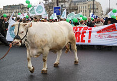 I coltivatori francesi direzione a Parigi fotografie stock