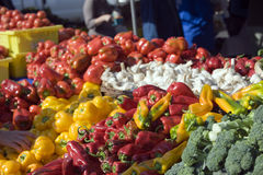 I coltivatori introducono i vegtables sul mercato freschi Fotografia Stock Libera da Diritti