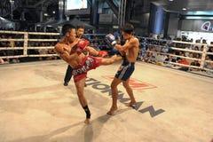I combattenti fanno concorrenza in una corrispondenza di inscatolamento tailandese Fotografie Stock Libere da Diritti