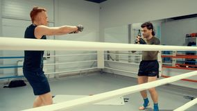 I combattenti stanno riscaldando prima della formazione sulla prima fila in palestra concetto dello sport professionale stock footage
