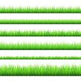 I confini dell'erba verde della primavera hanno messo su fondo bianco illustrazione vettoriale