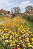 I confini graziosi del fiore al RHS fa il giardinaggio, Wisley, Surrey fotografia stock libera da diritti
