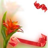 I congratulate on holiday! stock photos