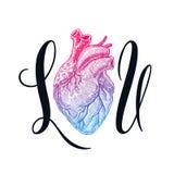 I corazón usted Fotografía de archivo