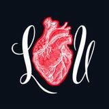 I corazón usted Imagen de archivo