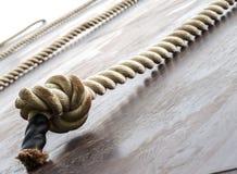 I corridori di corsa del fango, sconfiggenti gli ostacoli usando ropes fotografia stock